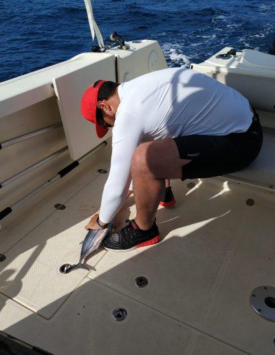 Pesca alistado barco currican