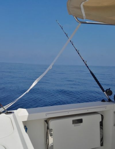 Salida de pesca currican